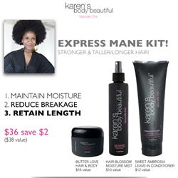 Express Mane Kit - Save $2