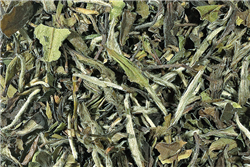 Pai Mu Tan White Caff Loose-Leaf Tea