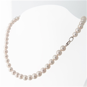 Statement Akoya Cultured Pearls, Versa Clasp, 18k gold