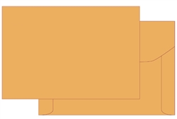 10 x 15 Document Envelope, Ungummed