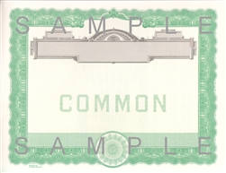 Goes® No Text Common Notice Stock Certificates, 100 pack