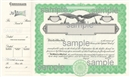 Goes® Eagle Stock Certificates, Green, 100 per package