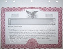 Goes® Corporate Stock Certificates KG9LLC
