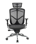 Fuzion Series Luxury Executive Office Chair FUZ9LX-HI by Eurotech