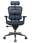Modern Ergohuman Mesh Back Office Chair ME7ERG by Eurotech