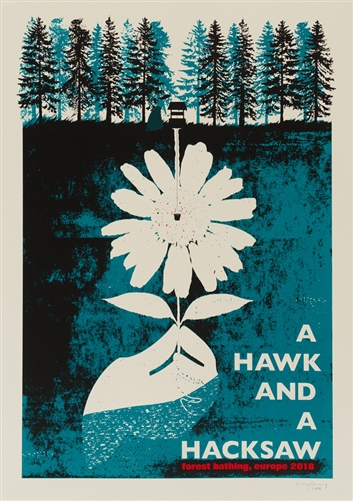 A Hawk And A Hacksaw concert poster by Craig Carry