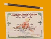 Magic | Wand | Magician Assistant Certificate