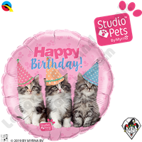 18 Inch Round Studio Pets Birthday Kittens Foil Balloon Qualatex 1ct