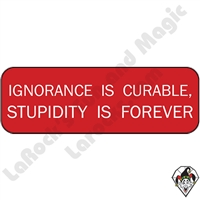 Stickers & Stuff | Pins & Buttons | Ignorance Is Curable Stupidity Is Forever Pin