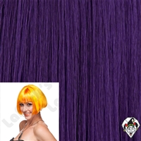 Clowning | Apparel | WIGS | Eve Wigs | Purple