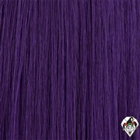 Party Page Wig Purple