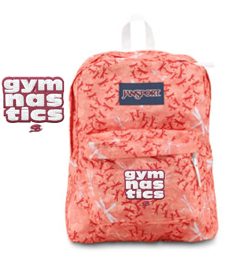 123b063e51 Gymnastics small Pink Dragonfly Jansport embroidered book bag