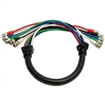 Calrad 55-611-3 5 BNC males to 5 BNC males 3 ft. Shielded RGB Video Cable