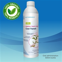 Cool Transit - 600ml