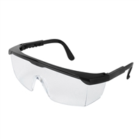 Annie Anti-Fog Protective Safety Goggles