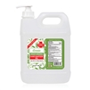 Annie Hand Sanitizer Gel 75% Alcohol 1 Gallon with Pump