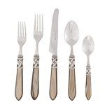 Vietri Aladdin Taupe Brilliant Five-Piece Place Setting
