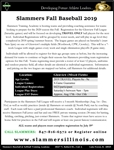 Fall Baseball - Glenview Registration