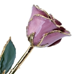 Pink Lilac Lacquer and Gold Dipped Rose