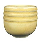 PC-31 Amaco Potter's Choce Glaze Oatmeal Pint