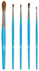 5 Piece Brush Set