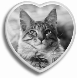 B&W Pet Heart Ceramic Picture