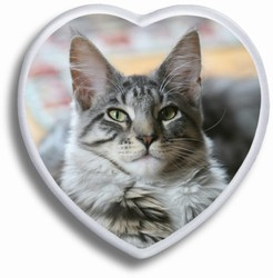 Color Pet Heart Ceramic Picture