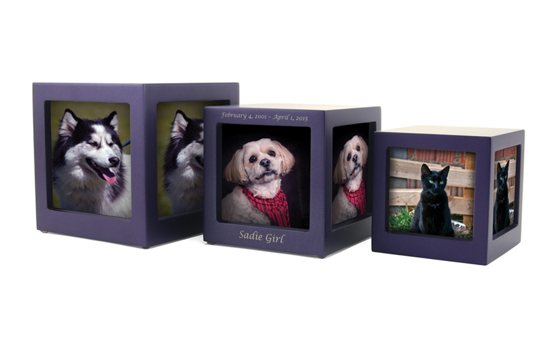 Violet Photo Cube Urns By Everlife Memorials