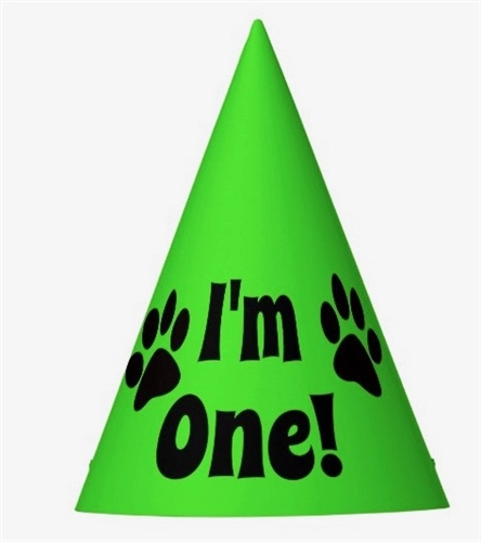 Im One Birthday Hats For Dogs