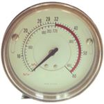 The Main Resource Air Gauge Coats Tire Changers