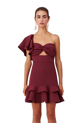 Keepsake Delight Mini Dress in Plum