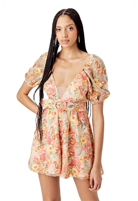 For Love & Lemons Winnie Embroidered Mini Dress in Golden