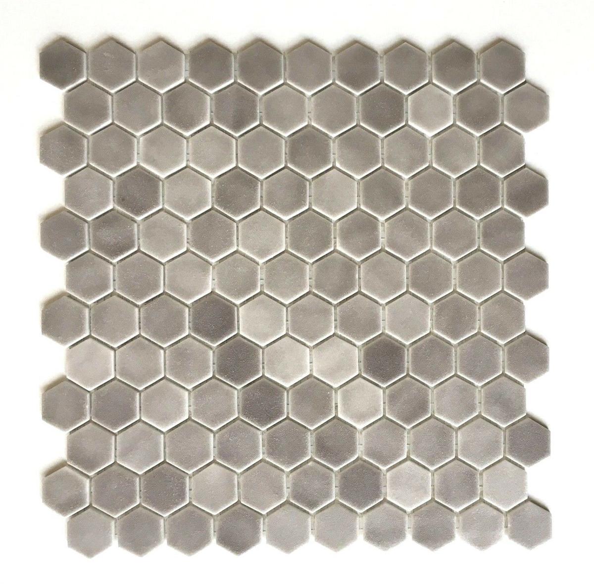1 Quot Daltile Hexagon Matte Frost Moka Glass Mosaic Tile
