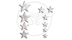 Pearloid Star Fret Markers