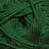 220 Superwash Merino 016 Verdant Green