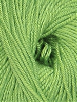 Cozy Soft Solids 27 Medium Mint (Discontinued)