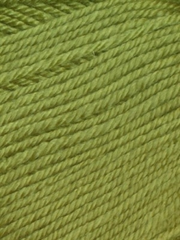 Cozy Soft Solids 49 Parrot Green