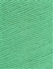 Cozy Soft Solids 51 Seafoam Green