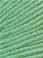 Cozy Soft Chunky Solids 205 Mint Scooter