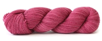 Sueño 1426 Bowl of Raspberries Tonal
