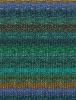 Silk Garden Sock 369 Blue/Green/Black/Brown (Discontinued)