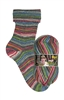 My Sock Design 9377 Railroad Romantic