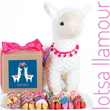 llama gift box and stuffed llama with chocolate covered fortune cookies is the perfect Valentine's day gift for your sweetheart.