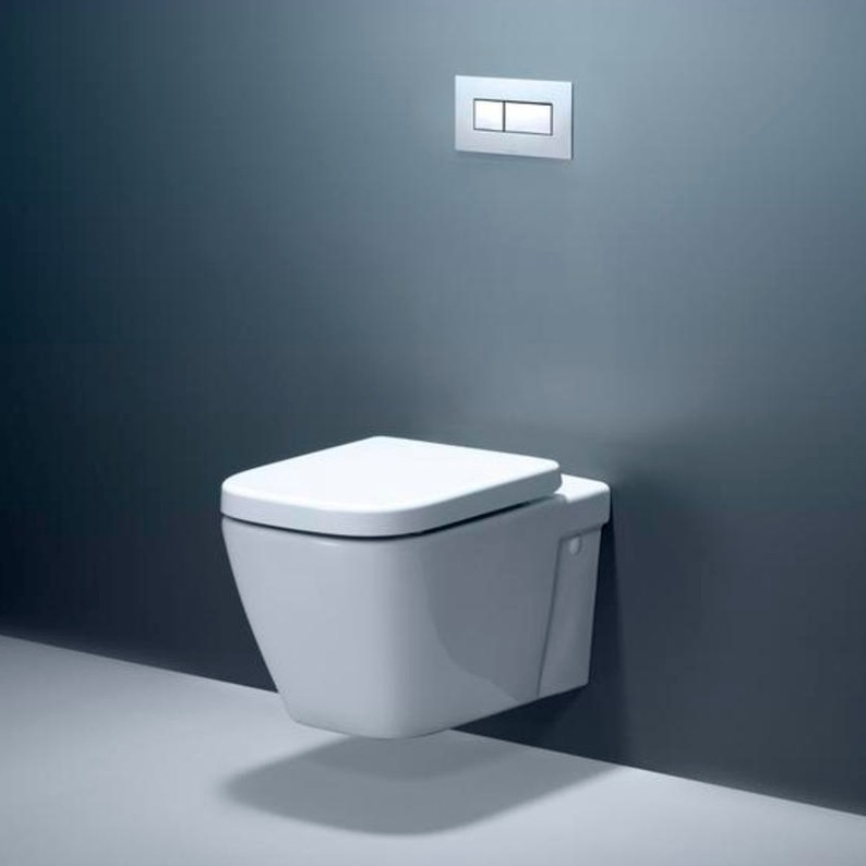 with - Wall Hung Toilet