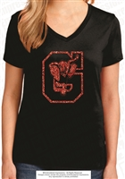 Glittered DMS Falcons Ladies V-Neck Tee