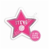 Acrylic Flair Pin - Steve Star
