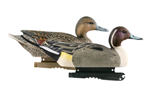 Hunter Series Life Size - Pintails