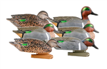 Pro-Grade Green-Winged Teal