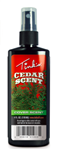 TINKS CEDAR POWER COVER SCENT