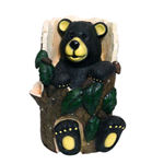 BEAR SITTING IN TREE TRUNK